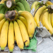 Gros Michel banana — Stock Photo #27147643