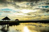 Jezioro Lotosu — Zdjęcie stockowe