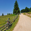 Bicycle on country road — Stock Photo