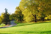 Autumn Morning in Park — Stock Photo