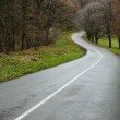 Curvy road — Stock Photo #23480267