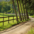 Road in Countryside — Stock Photo