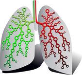 Pulmonaire diagnostiek — Stockvector