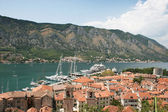 Port of Kotor — Stock Photo