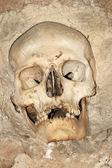 Torre del cranio — Foto Stock