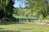 Göl arka plan — Stok fotoğraf