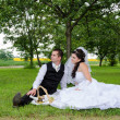 Wedding couple in a park — Stock Photo