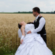 Wedding couple in a wheat land — Stock Photo