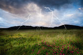 Thunderstorm with lightning in green meadow — Photo