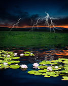 Thunderstorm with lightning in green meadow — Stock fotografie