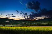 Rape field in the night — Stock Photo