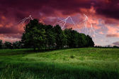 Thunderstorm with lightning in green meadow — Stock Photo