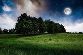 Night sky och träd bakgrund — Stockfoto