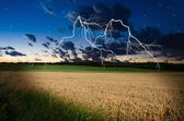 Thunderstorm with lightning in wheat land — Stock Photo