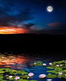 Night sky — 图库照片
