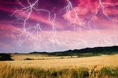 Tempestade com relâmpagos na terra do trigo — Fotografia Stock