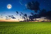 Green field in the night — Stock Photo