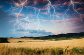 Storm in wheat land — Stock Photo