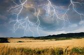 Шторм в земле пшеницы — Стоковое фото