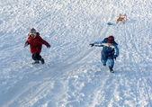 Snow game — Stock Photo