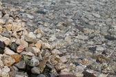 галька в чистой воде — Стоковое фото