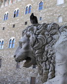 Sculpture of lion, Florence, Italy — Stock Photo