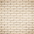 Blank wall made of bricks. Place for text — Stock Photo