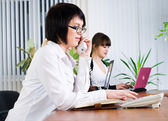 Young business ladies working in office — Stock Photo