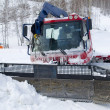 Frozen snowplow — Stock Photo #13526229
