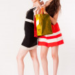 Two Pretty girls holding shopping bags - Stock fotografie