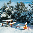 Benches with table in the snow — Stock Photo