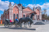 Bronze horses at the Provincial museum. Tobolsk — Stockfoto