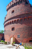 "Tower ""Dona"" on Verkhneye Lake shore. Kaliningrad — Zdjęcie stockowe"