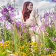 Постер, плакат: Beautiful red hair girl relaxing on meadow
