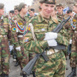 Постер, плакат: Attractive girl in military uniform before parade