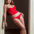 Sexy attractive woman in red lingerie — Stock Photo