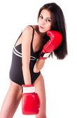Schöne boxerin — Stockfoto