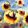Watercolor painting of beautiful sunflowers. — Stock Photo