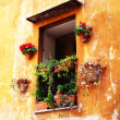 Window with flowers in Rome. — Stock Photo #25753805