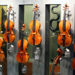 Постер, плакат: The most famous violins made by Andrea Amati Nicolo Amati Antonio Stradivari Giuseppe Guarneri Jacob Stalner in MUSEUM CITE DE LA MUSIQUE