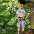 Young boy engaged in climbing on the tree. — Stock Photo #50377391
