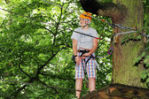 Young boy engaged in climbing on the tree. — Stock Photo