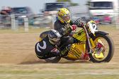 Sidecar grasstrack racing — Foto de Stock