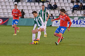 CORDOBA, SPAIN - JANUARY 13:Fede Vico W(29) in action during match league Cordoba(W) vs Numancia (R)(1-0) at the Municipal Stadium of the Archangel on January 13, 2013 in Cordoba Spain — Photo