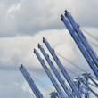 Row of Dockyard Cranes — Stock Photo