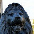 Stock Photo: Lion at trafalgar square