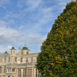 Stately home with tree — Stockfoto