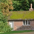 Stock Photo: Moss Roofed red brick cottage