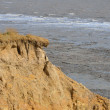 Stock Photo: Coastal erosion
