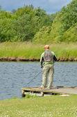 Pescatore a mosca — Foto Stock